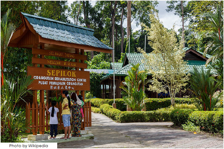 25 must visit in Malaysia, Kabili-Sepilok Nature Reserve, Sabah