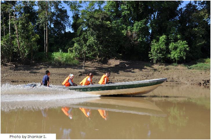 25 must visit in Malaysia, Kinabatangan River Safari, Sabah