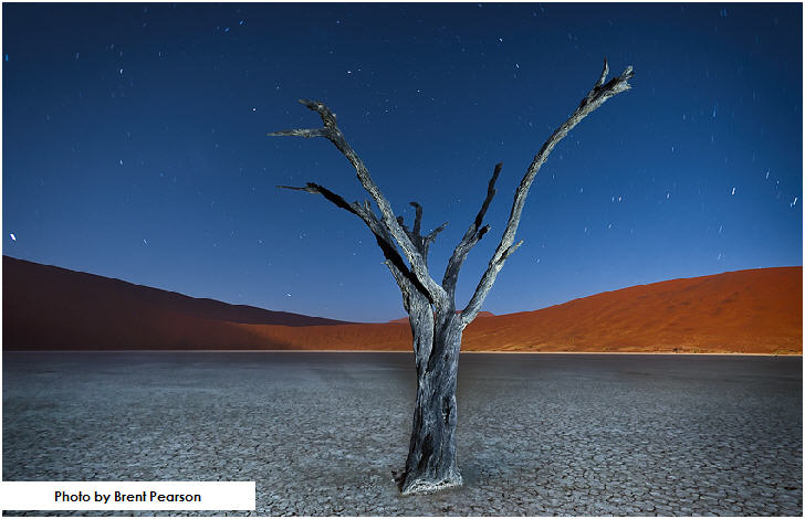 Deadvlei at night