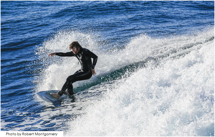 Surfer catching a wave as one of the beaches in Sydney