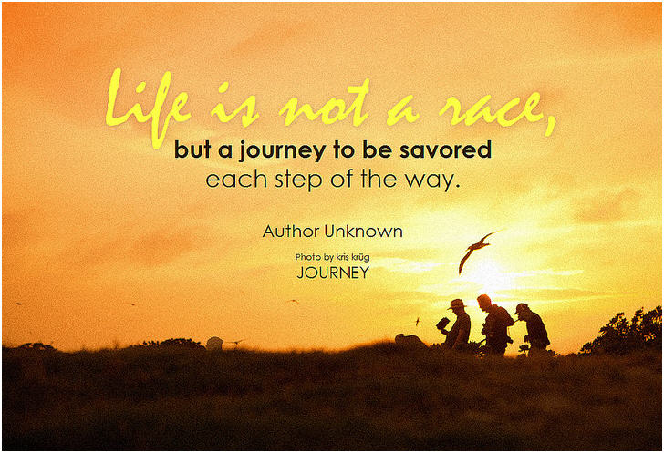 Travel Quote: Life Is Not A Race U2026
