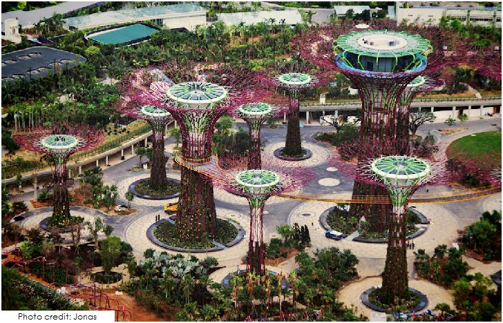 Singapore The Supertree Grove Garden by the Bay