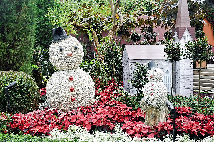 Yuletide in the Flower Dome, Christmas Wonderland, Gardens by the Bay