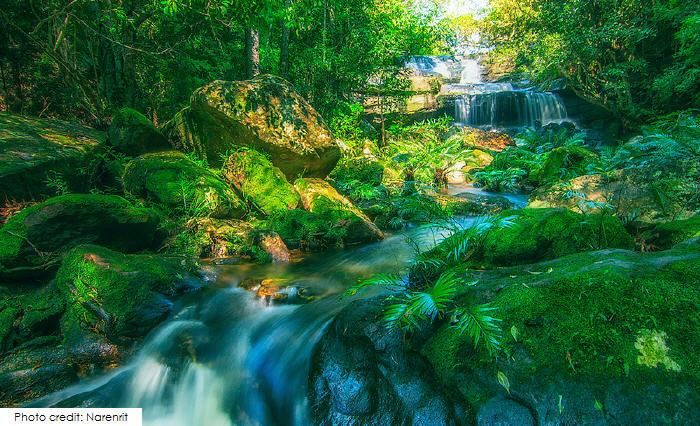 Phon Phop Waterfall, Phu Kradueng National Park
