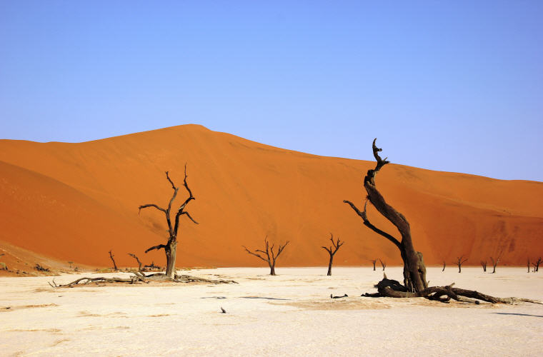 Deadvlei, Namibia, Best time to book hotels for Summer Travel
