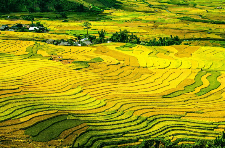 Mu Cang Chai, Vietnam, Cheap flights guide to 10 favourite holiday destinations