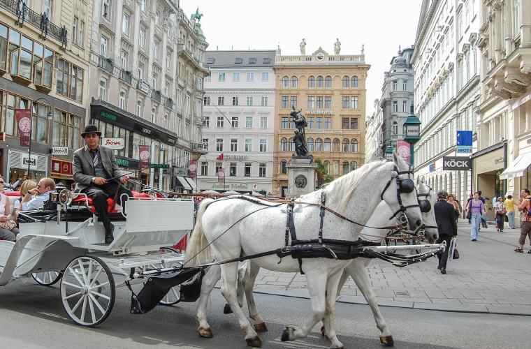 Top Accommodations in Vienna, Austria, Photo credit: Michal Jarmoluk