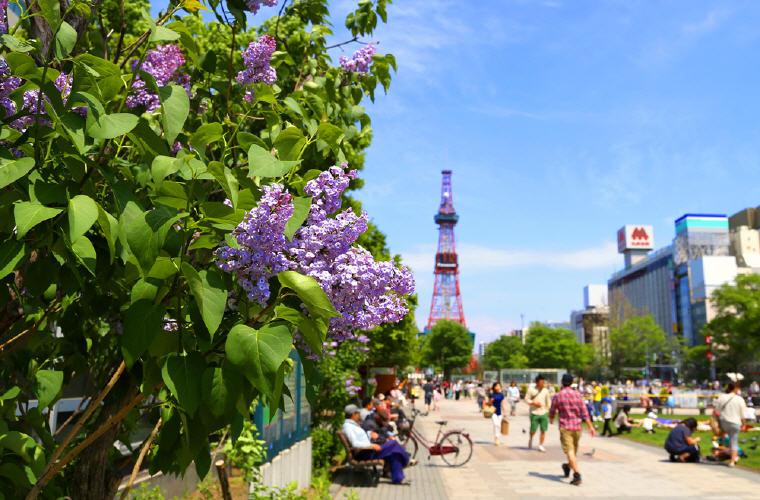 Odori Park, Welcome to Sapporo