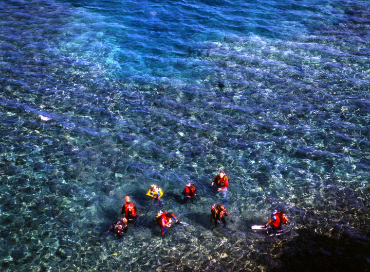 Diving in Okinawa, top things to do in Okinawa