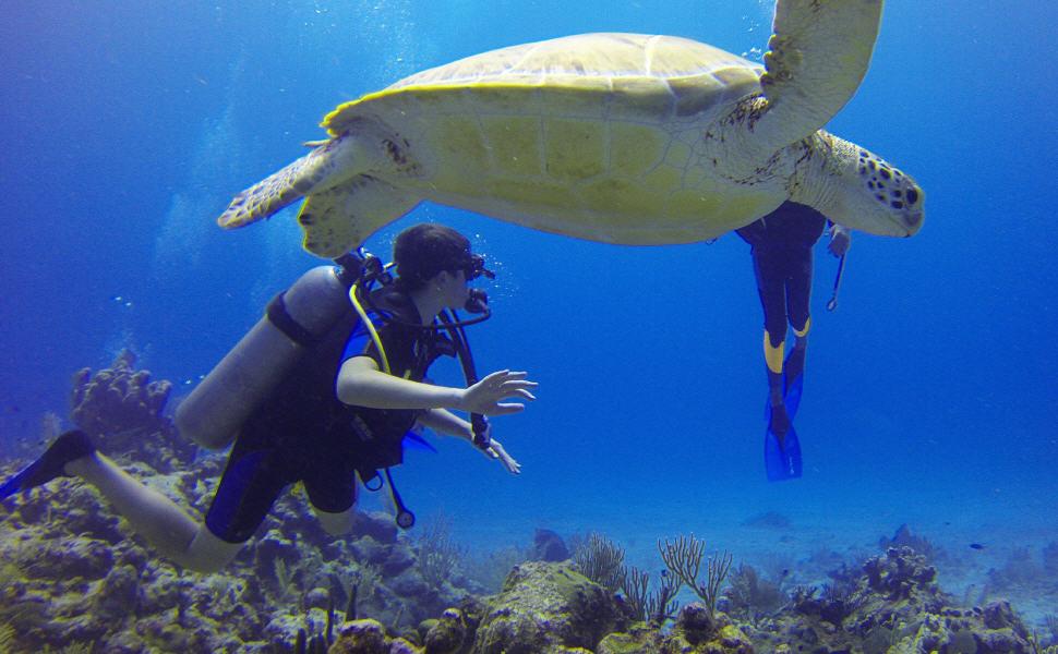 Travel insurance for scuba diving, World Nomads