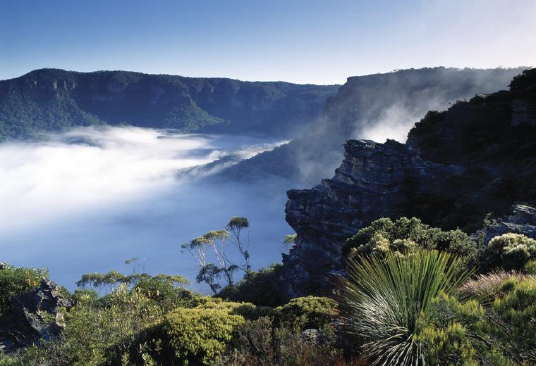 Jamison Valley, Blue Mountains, NSW, Photo credit: Tourism Australia