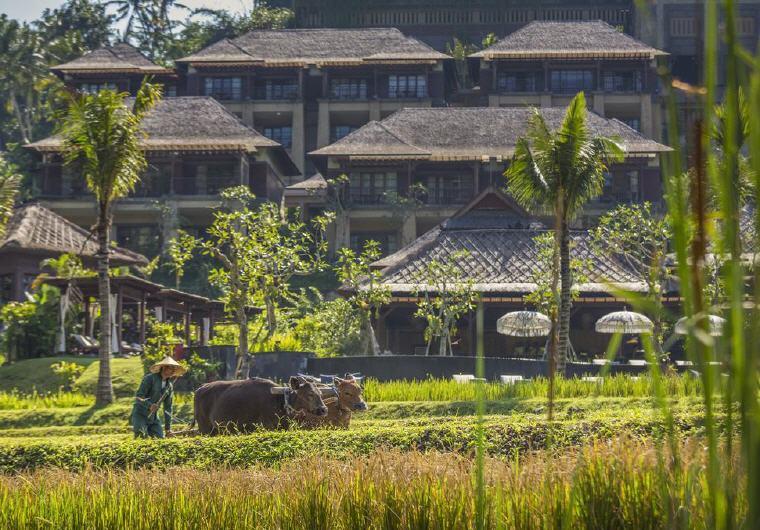 Top 25 Hotels Mandapa, A Ritz-Carlton Reserve, Ubud, Indonesia