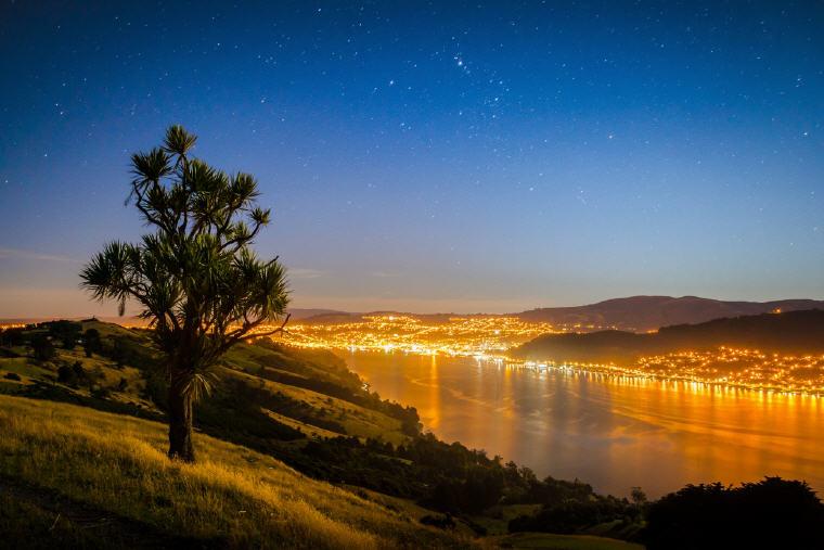 Otago Peninsula, Dunedin, New Zealand, Photo credit: DunedinNZ