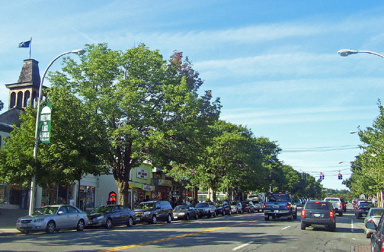 Downtown, Lake George, New York, Credit: Wikipedia, Top domestic summer vacation destinations U.S. 2017