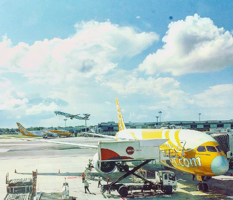 Scoot's Dreamliner, Photo credit: Scoot's Instagram