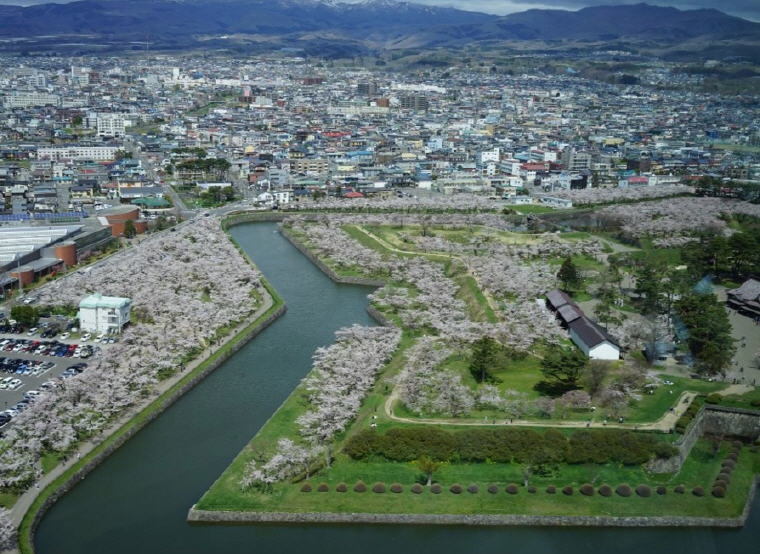 Goryokaku, Hakodate, Photo by Kar P, TripAdvisor, Cherry Blossoms Spots in Japan that are off the tourist trail