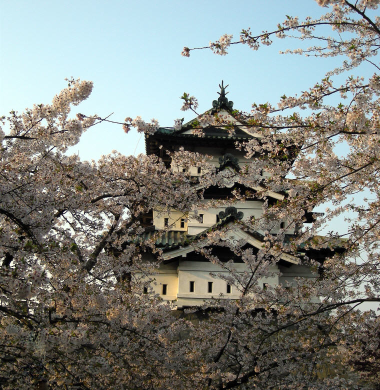 Hirosaki Castle, Aomori, ©JNTO, Cherry Blossoms Spots in Japan that are off the tourist trail