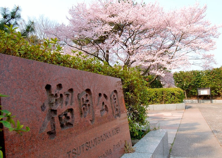 Tsutsujigaoka Park, Sendai, Photo by sendai-travel.jp