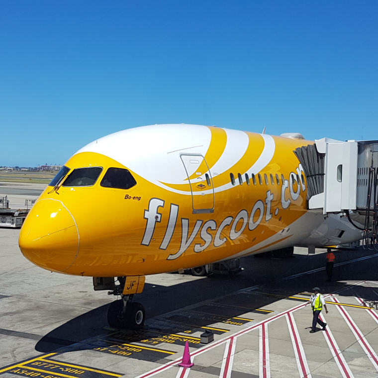 Exclusive Scoot Deals on Skyscanner