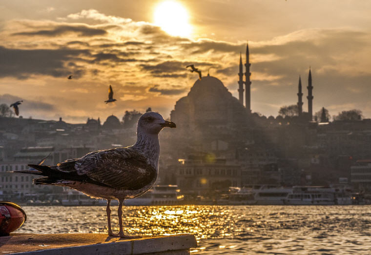 Photo credit: Mücahit Yıldız, Istanbul, Turkey, 25 Best Destinations in the world 2018