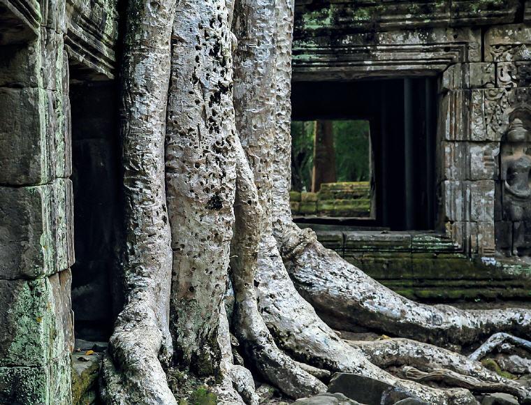 Angkor Wat, world's top landmark 2018, Photo credit: veronica111886