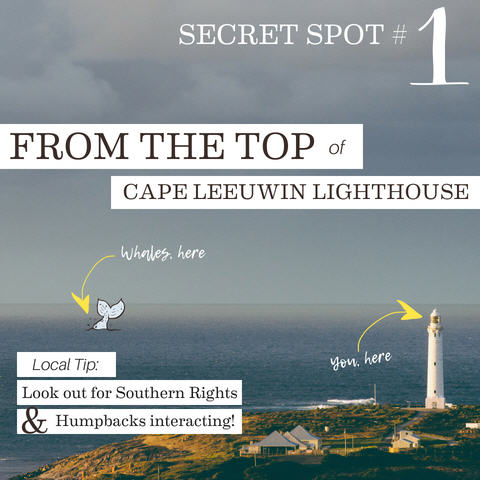 From the Top of Cape Leeuwin Lighthouse, 5 Whale-y cool secret spots for whale watching in the Margaret River