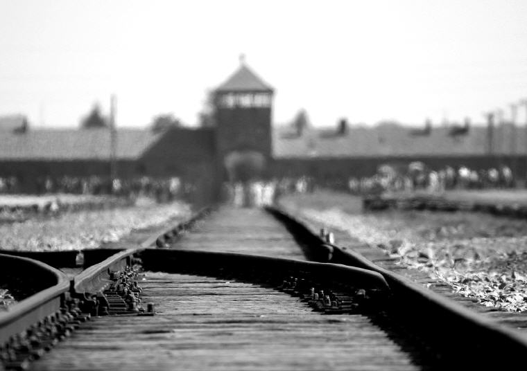 Auschwitz-Birkenau Half-Day Tour plus Wieliczka Salt Mine Half-Day Tour, Photo credit: Ron Porter