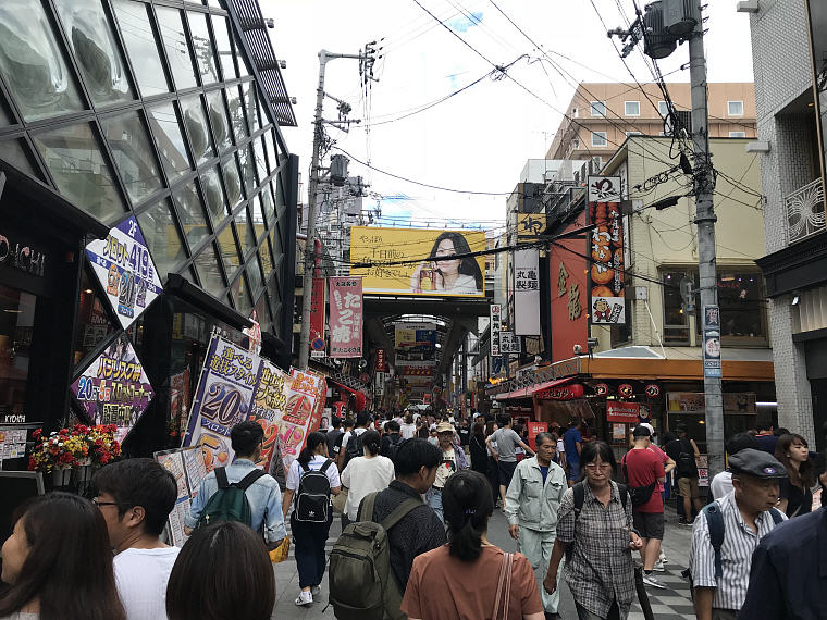 Crowded Denden Town, 6 Days 5 Nights Osaka, Kyoto and Tokyo Trip