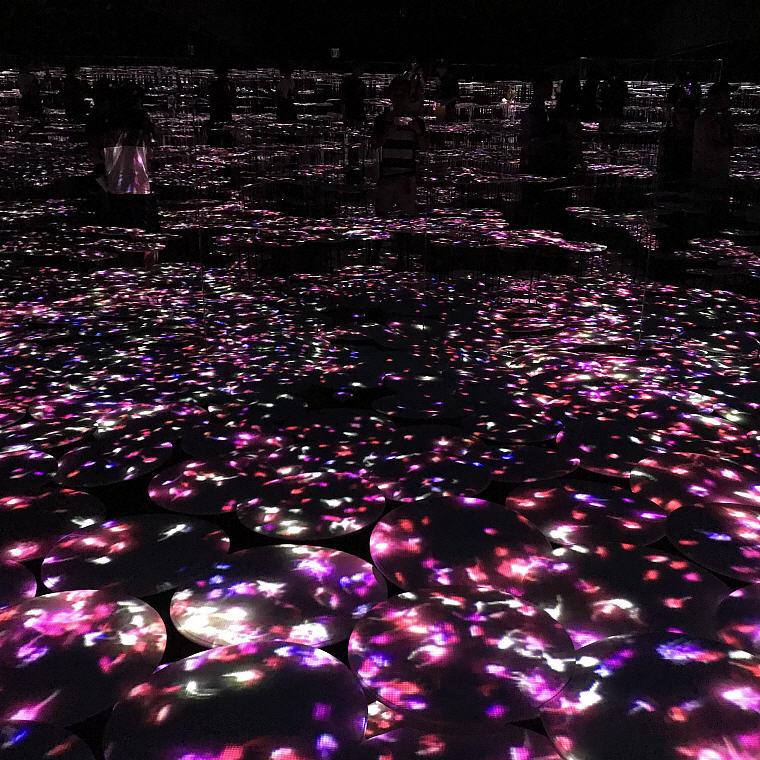 3 Digital Art Museum, 6 Days 5 Nights Osaka, Kyoto and Tokyo Trip Itinerary
